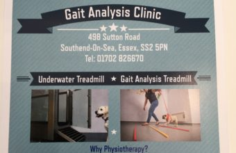 Gait Analysis Clinic